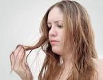 Эластичность волос что это такое