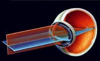 Норма давления в глазном яблоке