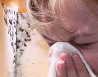 Аллергия на плесневые грибы удаляем плесень навсегда