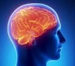 Отек мозга википедия