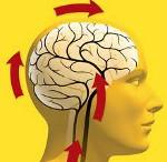Дисциркуляторная энцефалопатия - причины, симптомы, диагностика и лечение