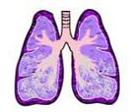 Отек легких – симптомы, причины и лечение отека легких. Неотложная помощь при отеке легких