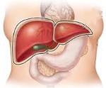 Гепатит от лекарств 20