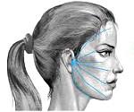 Роль лицевого нерва в проявлениях лицевых болей